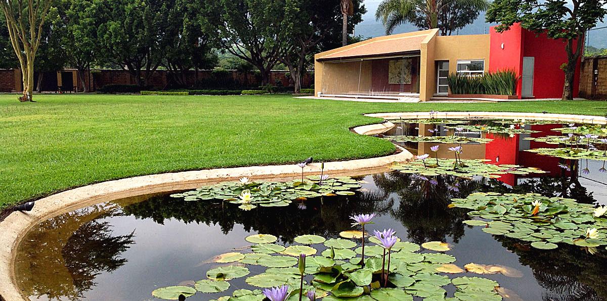 Entorno verde for Lagunas artificiales para jardin
