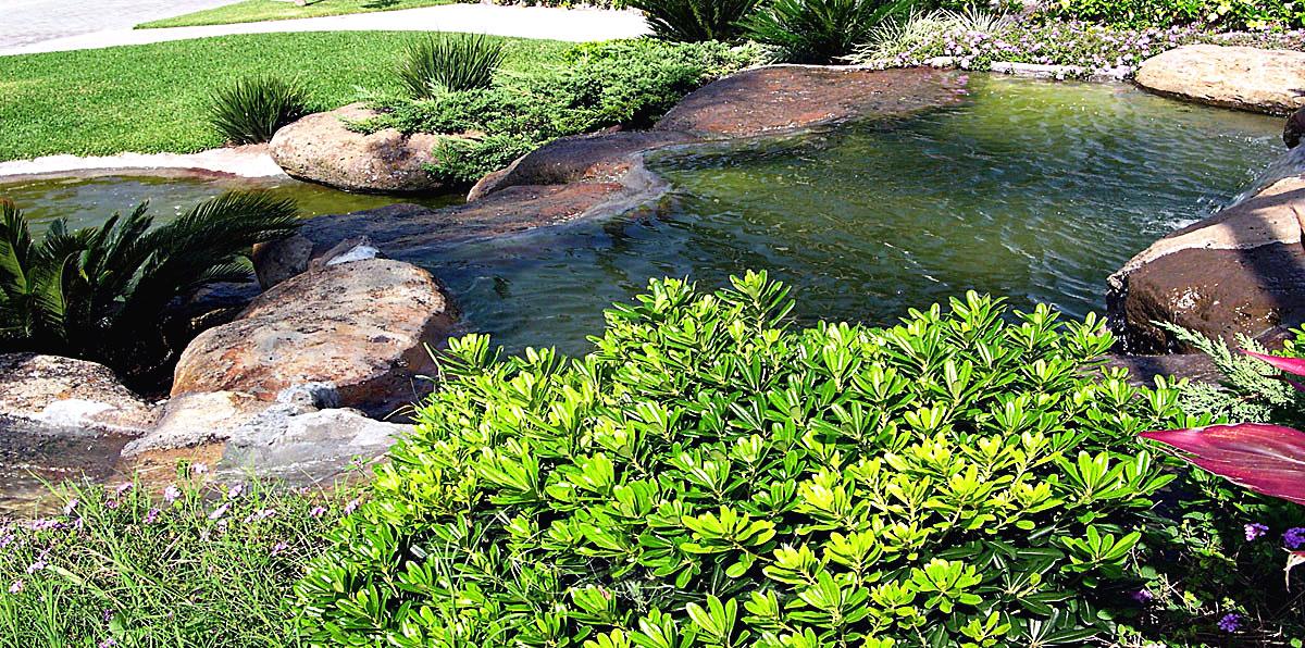Entorno verde for Como construir un lago artificial